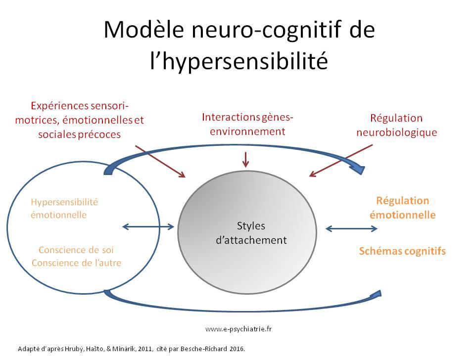 hypersensibilité émotionnelle : quels signes révèlent un hypersensible ?