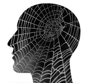 L'arachnophobie est la phobie des araignées